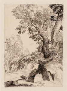 Paul Bril (Flemish (born in Belgium), 1554–1626.)Trees on a Rocky Bank, c. 1590.ink on paper,35.2 x 27 cm.Collection of the Winnipeg Art Gallery, G-63-300.Photo: Ernest Mayer